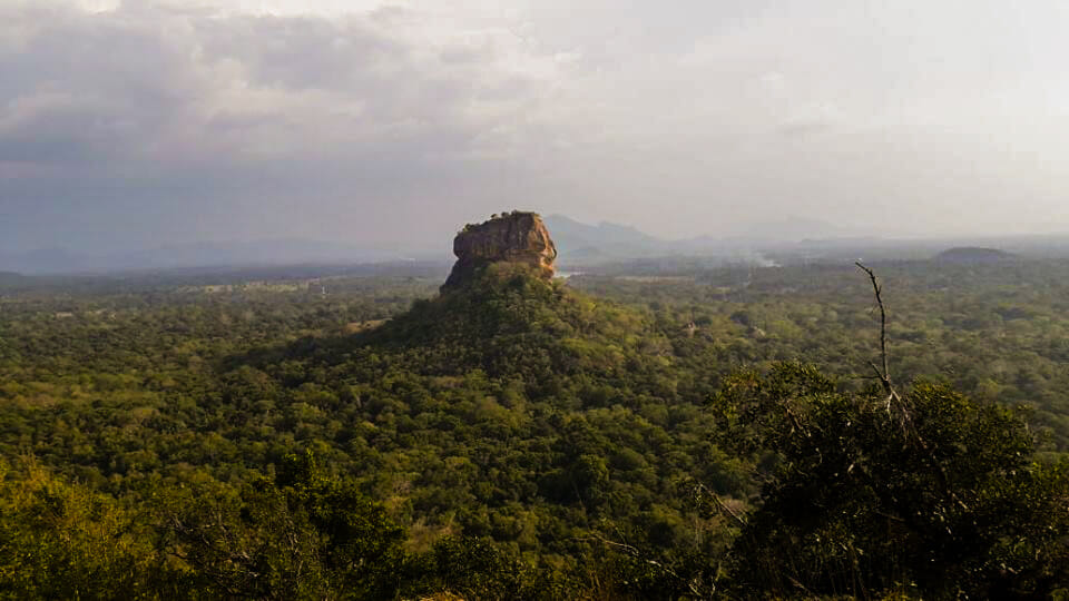 Sigiriya View from Pidurangala (3)